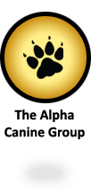 The Alpha Canine Group - offering a complete selection of canine training services